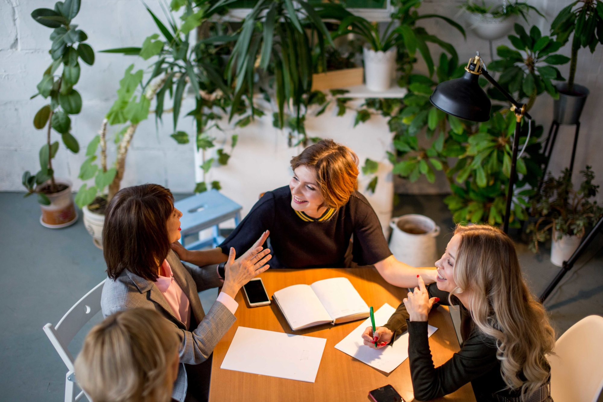 The Health Wellbeing Benefits Of Plants In The Office Making Moves